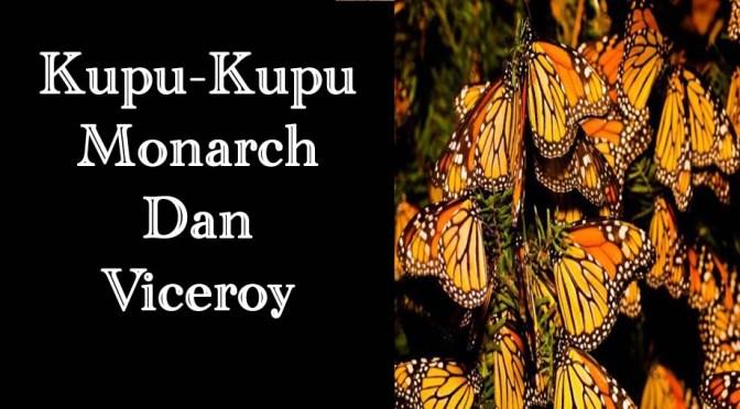 Kupu-kupu Monarch dan Viceroy